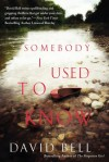 SomebodyIUsedtoKnow